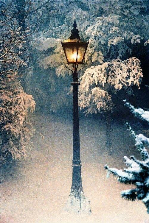 narnia street light