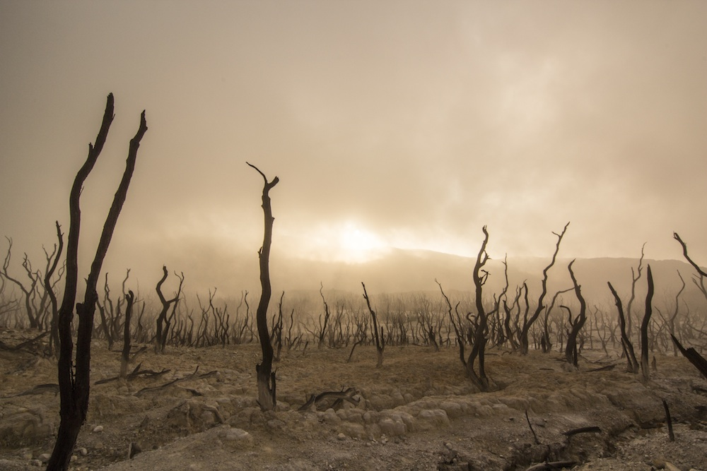 barren burned landscape unsplash